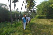 Walks in the surrounding area