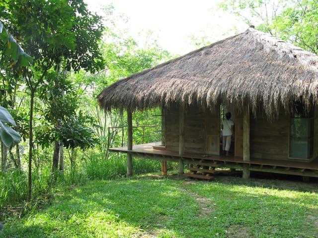 Sri Lankan Tropical Retreat