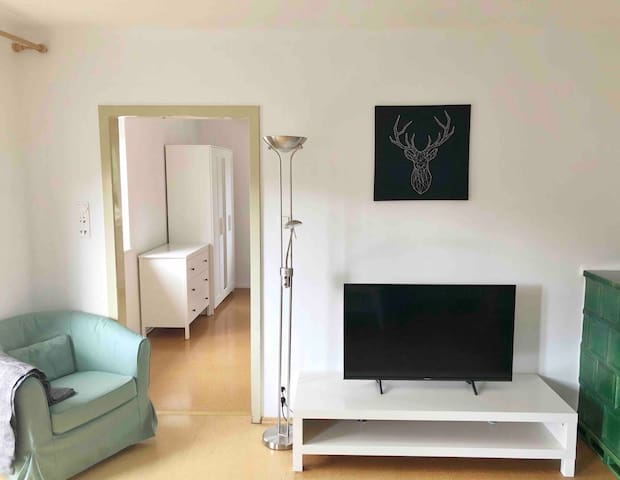 Cosy appartement located in Salzburg city