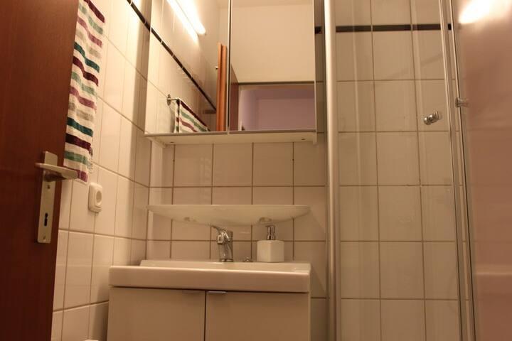 das kleine Bad mit Duschkabine wurde erst im Dez 2014 neu renoviert.