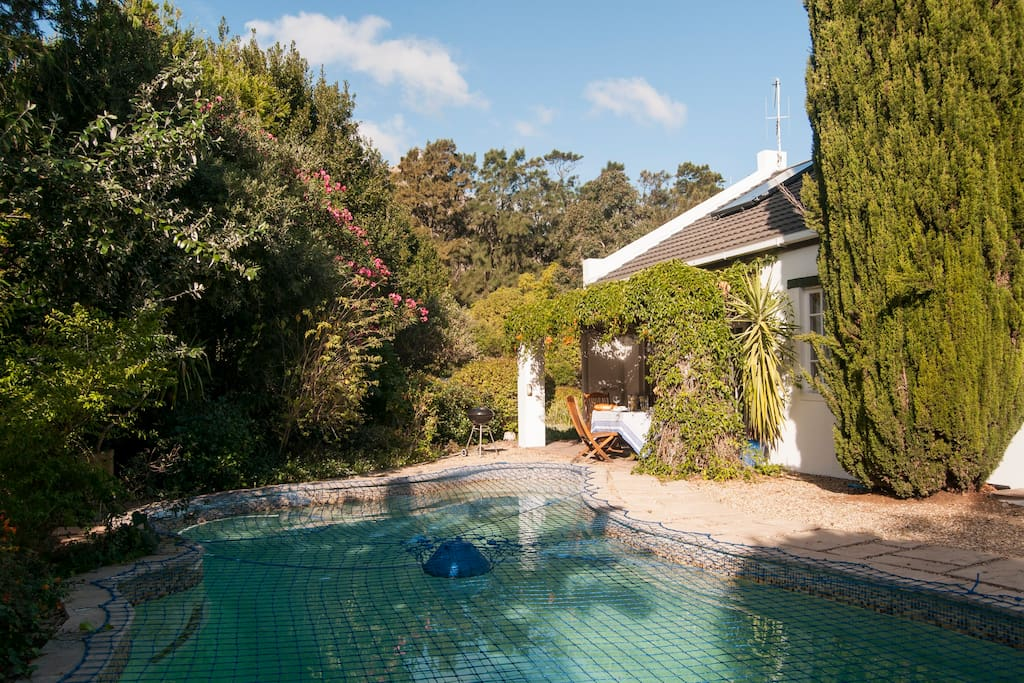 The pool (covered by a pool net in winter for safety - your choice when you stay with us!)
