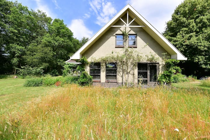 Een Fries boshuis: overnachten tussen de vogels