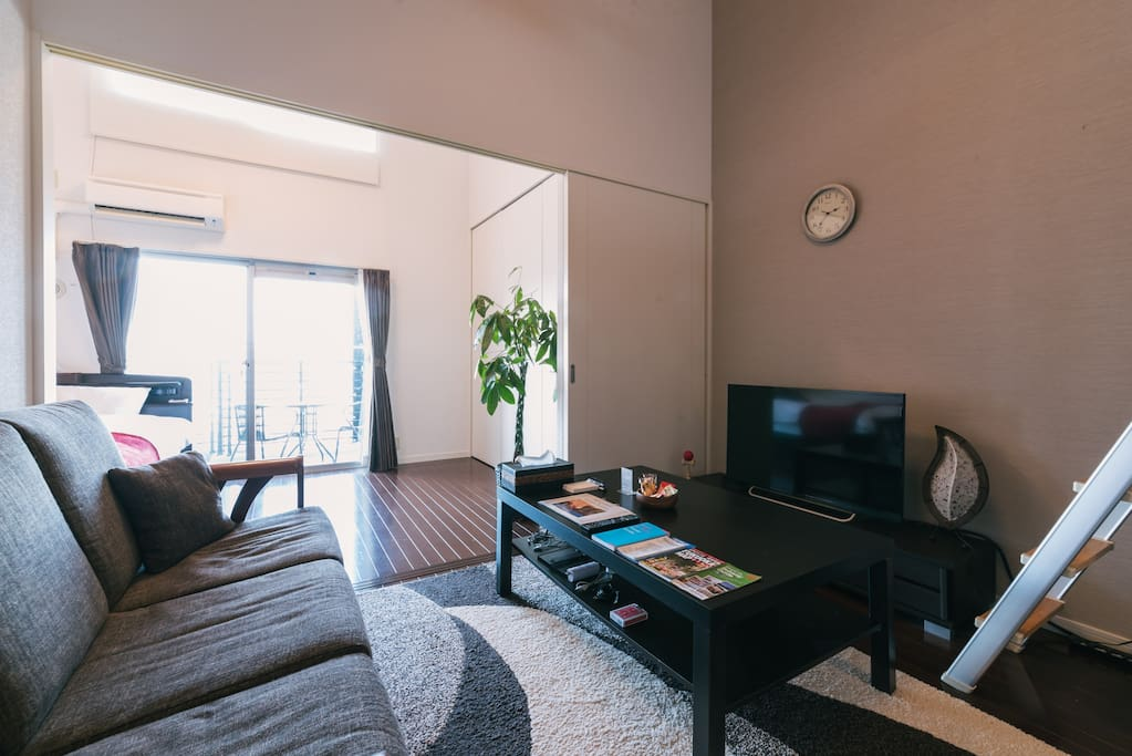 Over View of the Apartment!! Very Spacious and Cozy!! You Will Like It!!