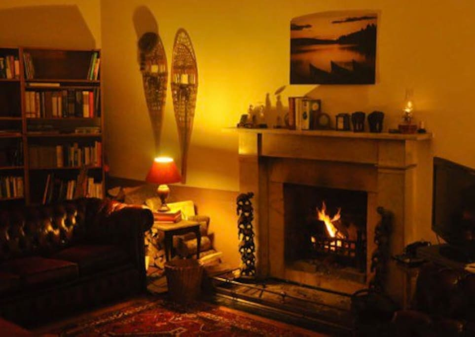 Comfortable lounge with peat / log fire