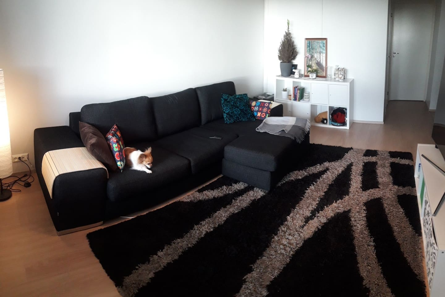 Comfy livingroom to ensure you a pleasant stay. Don't mind the dog. :)