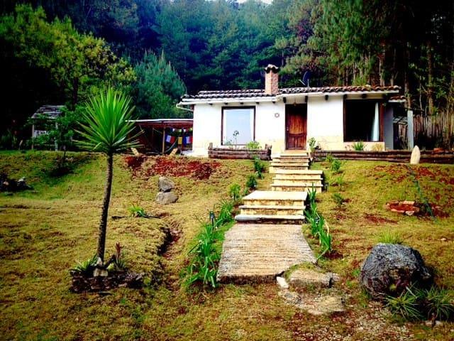 Zen forest house - San Cristóbal de las Casas - Haus
