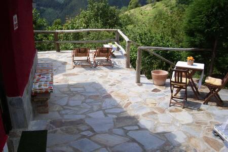 Casa con encanto en valle asturiano - Rales villaviciosa