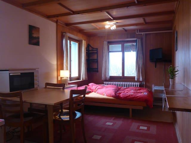 gemütliches Studio für 2 Personen - Flims - Appartement