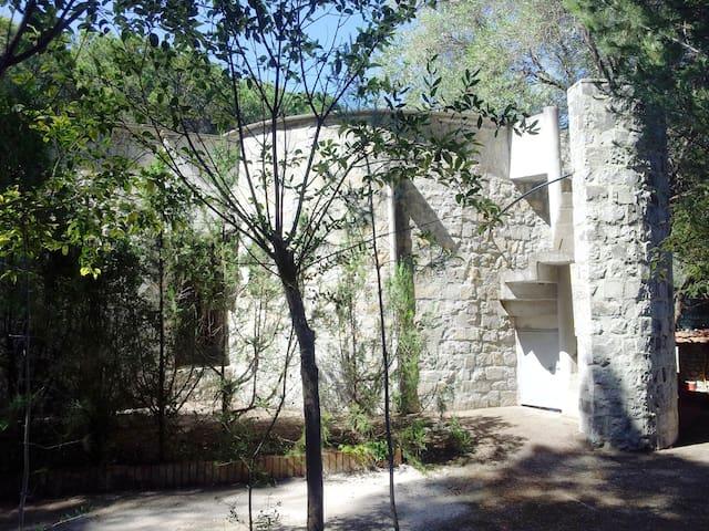 Villa con giardino a Palinuro