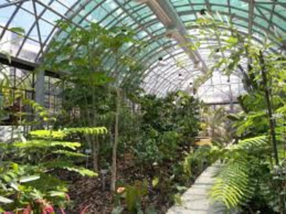 il bellissimo Orto botanico di Catania a 50mt dalla struttura.