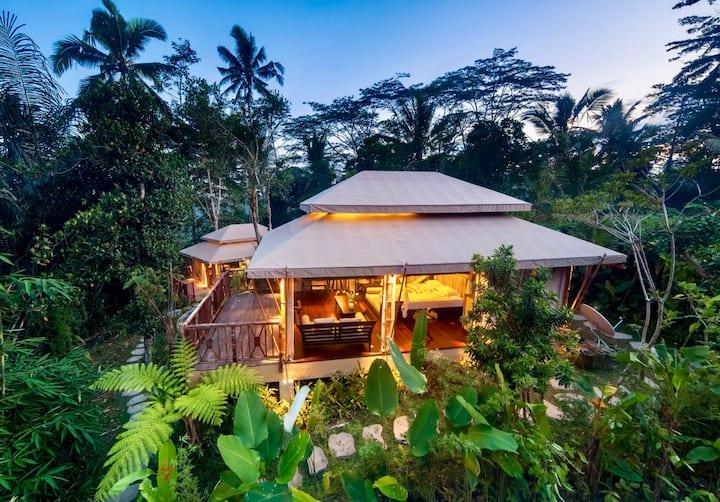 SALE 50% off | Safari Tent Beside Tropical Jungle
