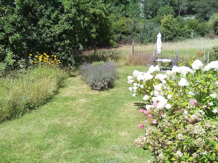 Professionally designed garden with wild flowers and cut curved paths