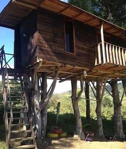 Casa de árbol en Tomebamba Paute Ecuador