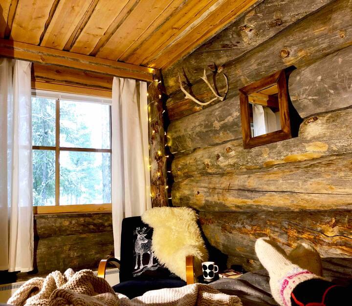 Lapland Lodge Pyhä - Ski in, free wifi,  sauna