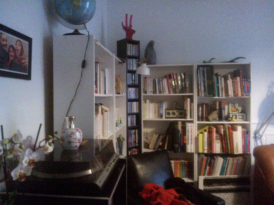 Coin bibliothèque/vinyls dans le salon, à disposition.