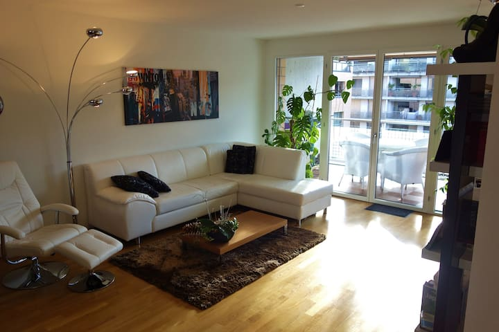 Modern,spacious and close to center - Basel - Apartment