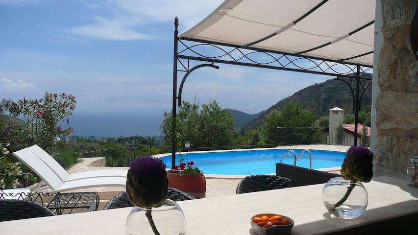 ALMOND LODGE in Mesudiye, Datça - shared pool - Datça - Casa