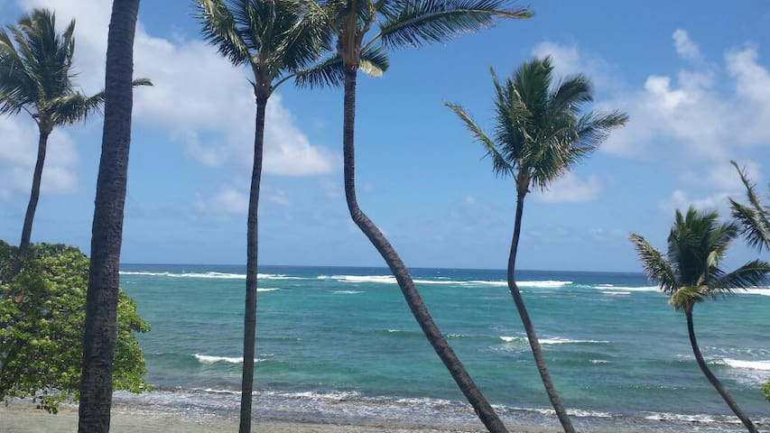 2 BEDROOM OCEAN FRONT AMAZING VIEWS - Kapaa - Departamento