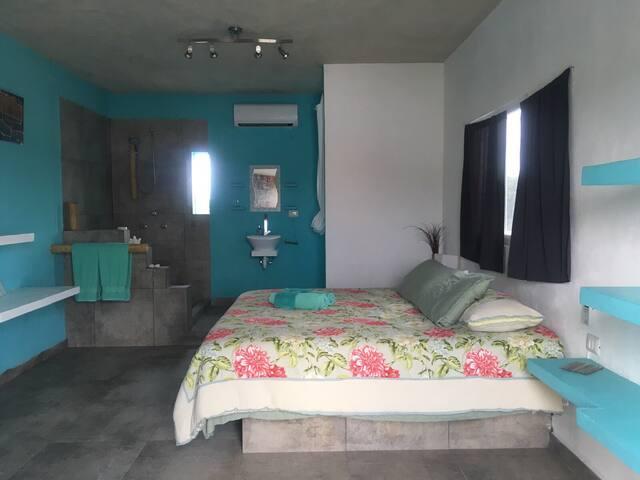 Chambre lit king avec salle de bain privé (V)