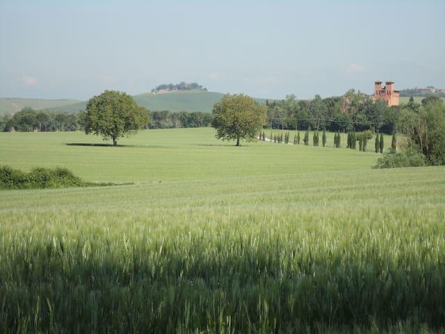 Castello di San Fabiano Wedding Venue - Monteroni D'arbia - Slott