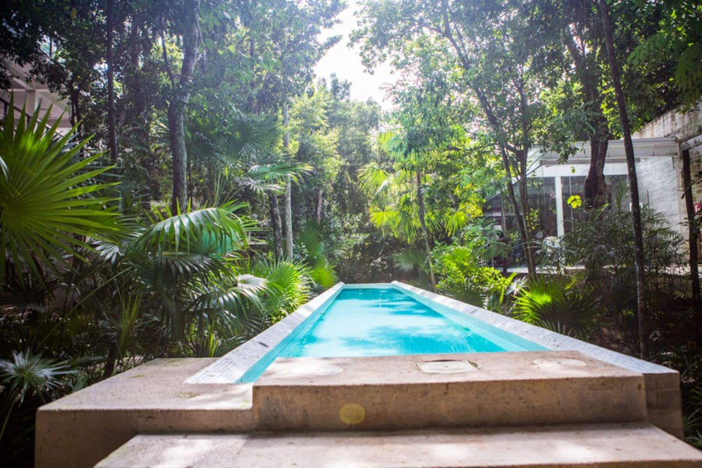 Lap pool at the TAO Wellness Center, beautifully settled in the jungle.