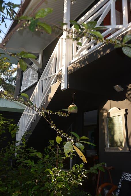L'appartement, vu du jardin From the garden