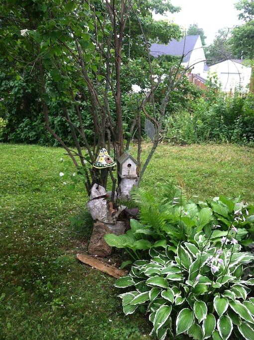 Small garden in yard.