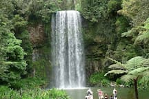 Nearby Millaa Millaa Falls.
