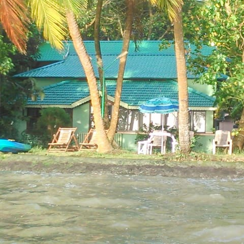 View From Back Waters .
