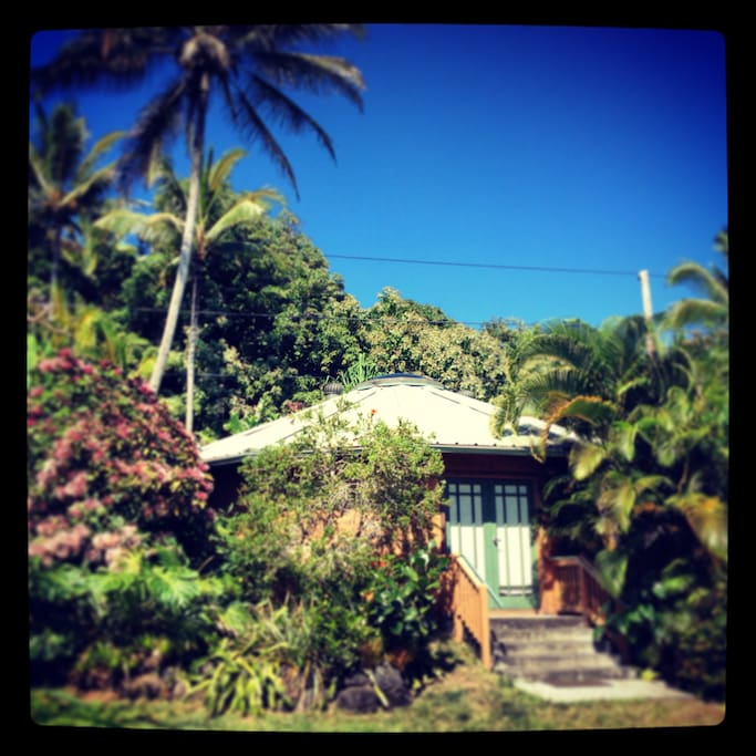 Compatible for the yoga-enthusiast lifestyle and with plenty of space, no visible neighbors and just a block from the only swimming beach in the area, this home encourages you to unplug and relax, chill pool-side while listening to the lulling sounds of t