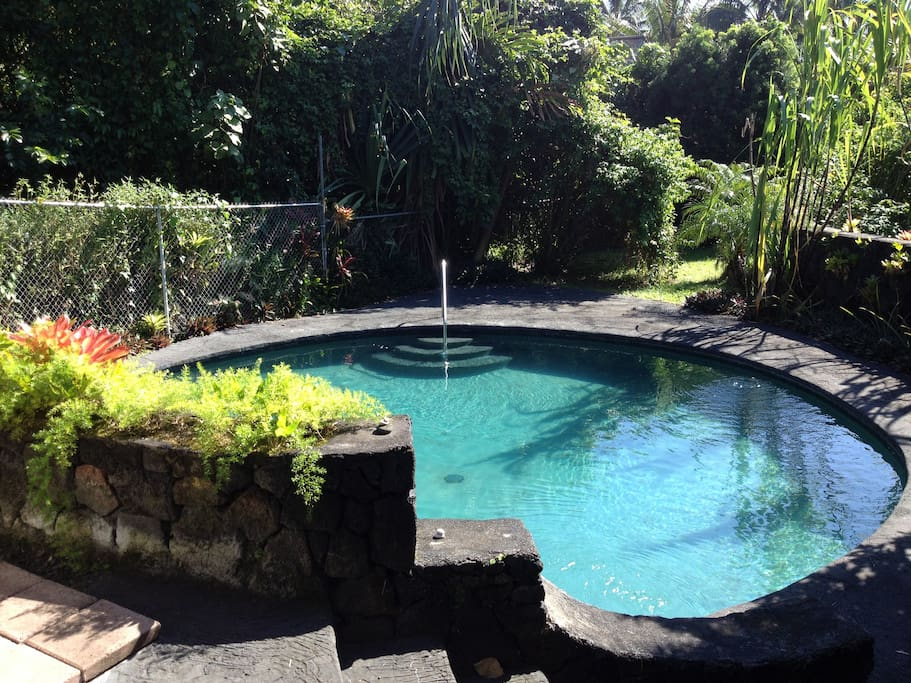 """Our property offers a courtyard-type feel with a 30 ft. round, 3.5 ft. deep, in-ground gunite pool enclosed by a lava-rock wall on one side and an undeveloped, privately-owned """"jungle"""" lot on the other for complete privacy. With an average temperature of"""