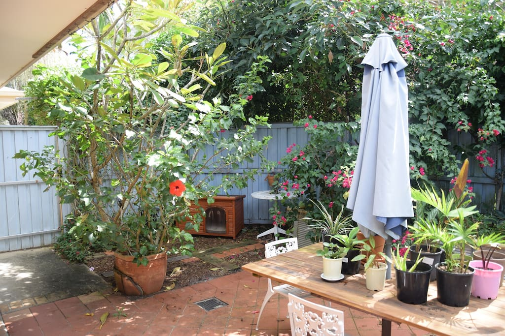 Gorgeous green courtyard with BBQ and rear access