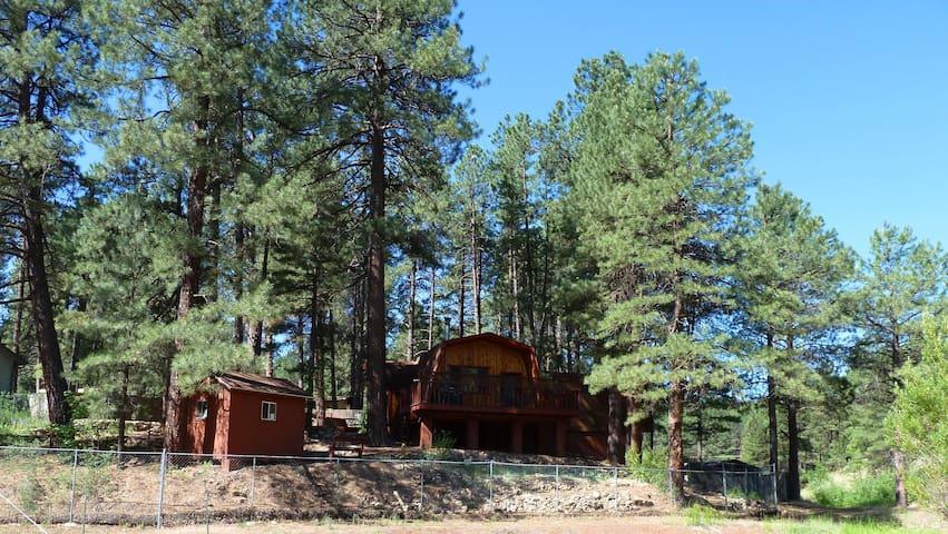 Flagstaff Cozy Cabin - Flagstaff - Srub