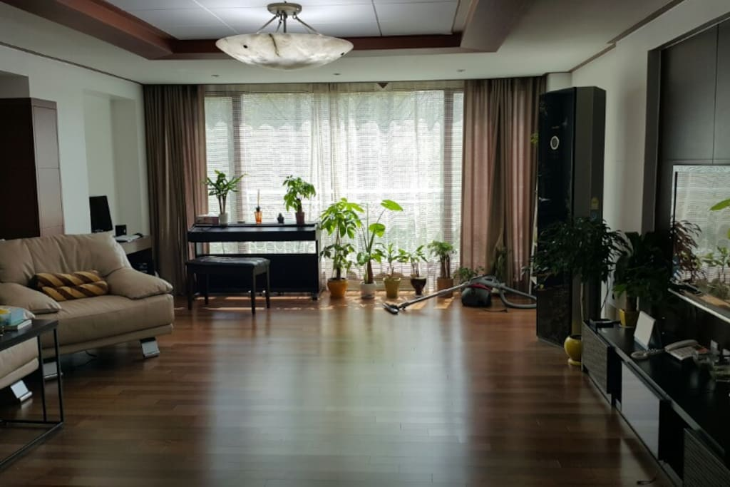 living room, piano, couch, TV, computer, park view