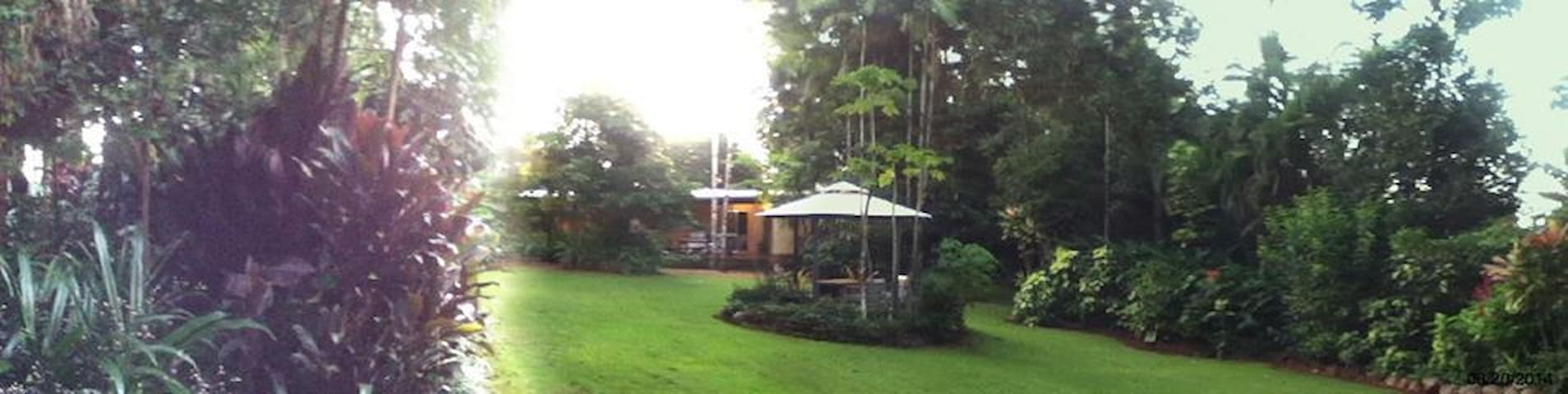 Gecko Guesthouse in the rainforest - Camp Creek - Bed & Breakfast