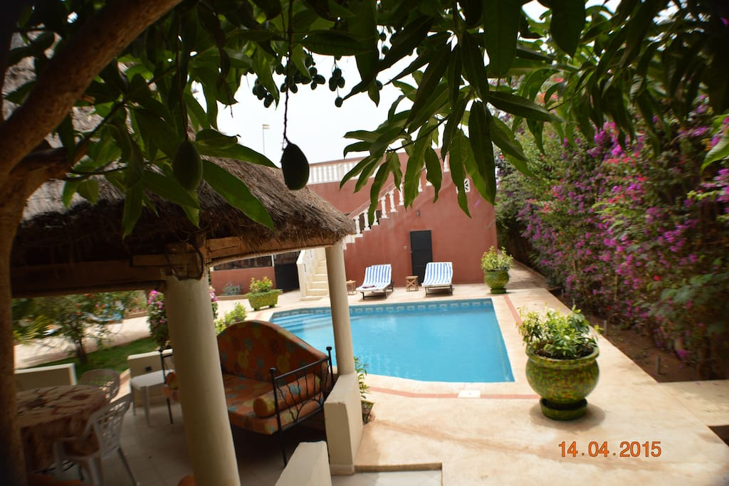 B b piscine ngaparou bed breakfasts for rent in for Jardin 600m2