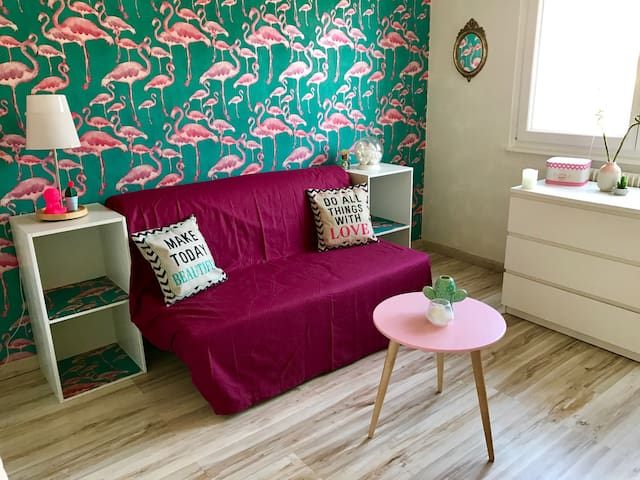Flamingo Room Near Train Station - Straatsburg - Appartement