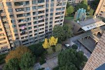 飘窗俯瞰小区中心绿化