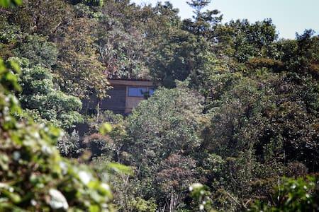 Casa dowii birding reserve