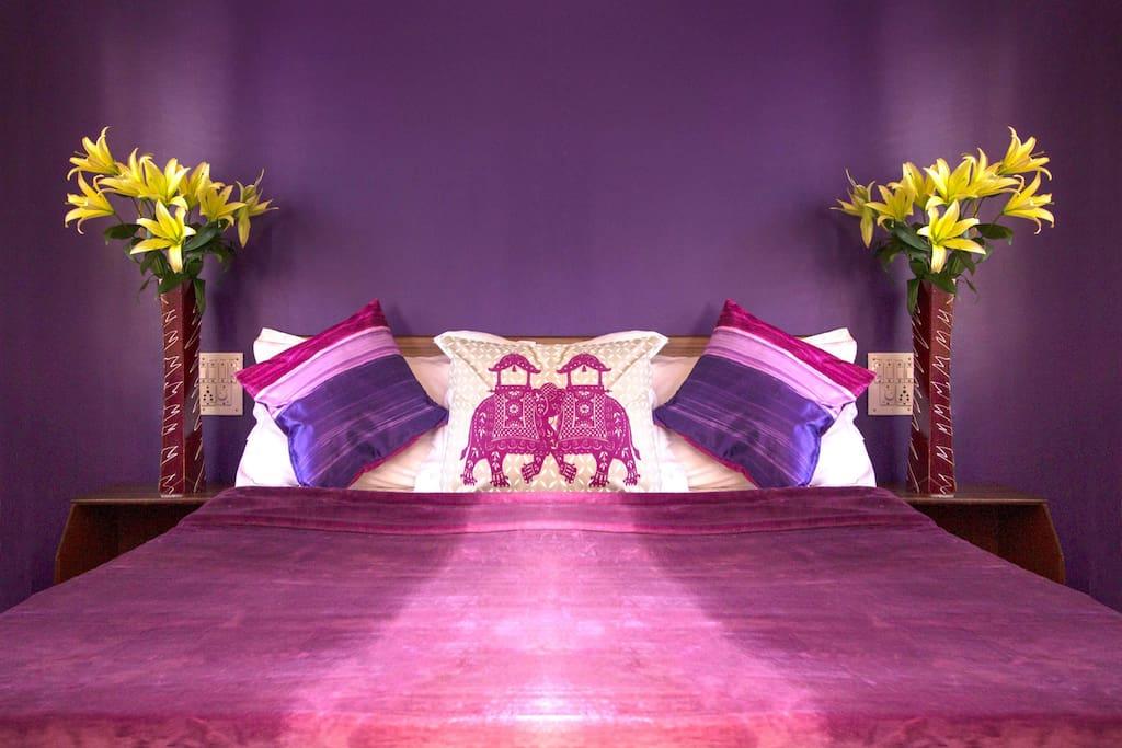 Bangalore Purple suite