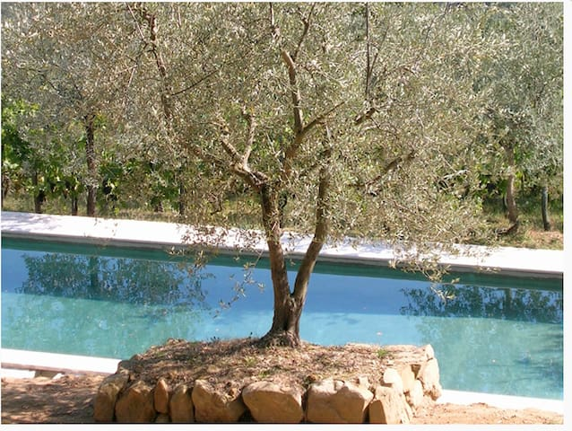Stunning Umbrian Villa With 16mPool - Lugnano - 別墅