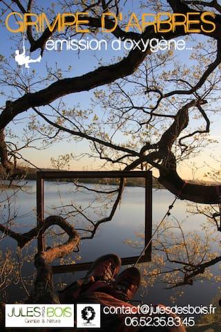 Nuits arboricoles & bivouacs perché - Hédé-Bazouges - Casa na árvore