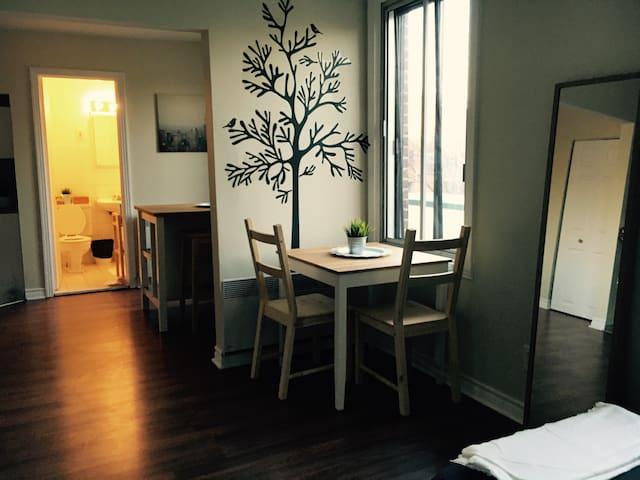 Cute 1 bed studio in the plateau - Montreal - Apartamento