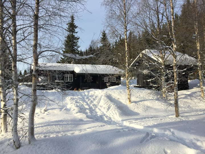 Cozy private cabin with all facilities-Lillehammer