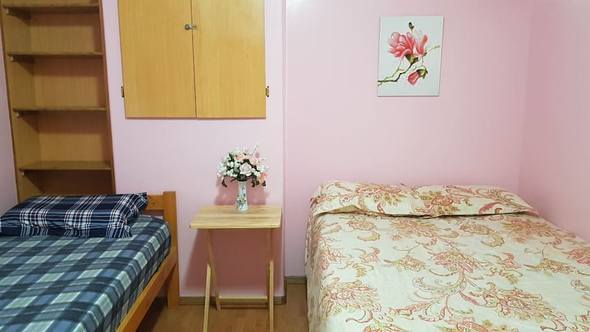 Homey Private Basement Room / 15 min to Airport