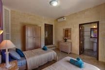 Twin Room /  Ensuite bathroom with Air Condition and Heating facilities