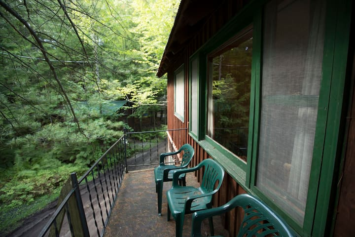 Treetops Cabin at Palmer Point - Old Forge