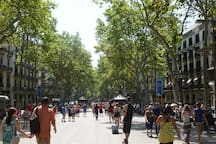 Las ramblas - 10 min walking