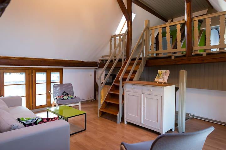 Logement rénové dans ferme alsacien - Pfettisheim - Apartment