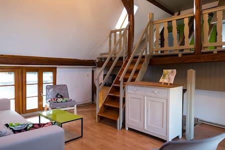 Logement rénové dans ferme alsacien - Pfettisheim - 公寓